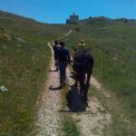 trekking someggiato
