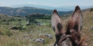 Trekking someggiato Abruzzo Gira e Rigira